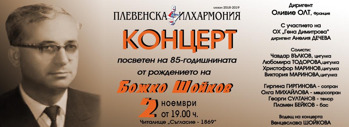 slide--bojko-shoikov